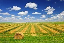 Terreno Commerciale in vendita