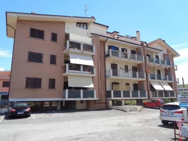 Appartamento in ottime condizioni in affitto Rif. 7085342