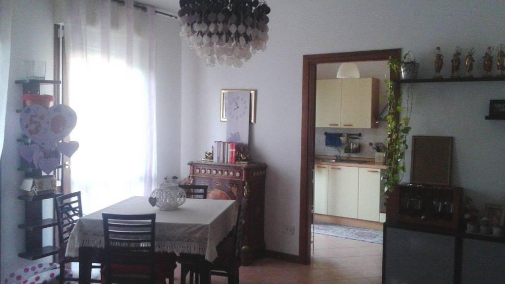 Appartamento in ottime condizioni parzialmente arredato in affitto
