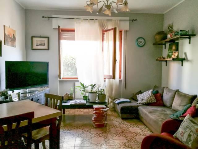 Appartamento in buone condizioni in affitto Rif. 7148958
