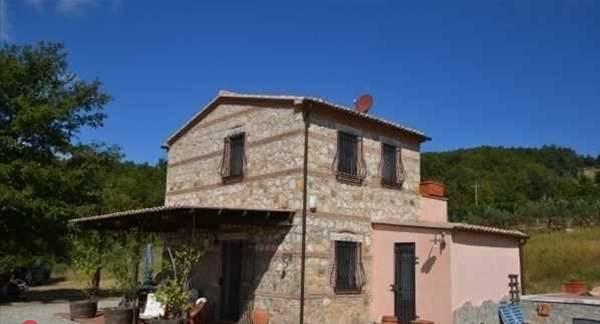 Rustico / Casale in buone condizioni in vendita Rif. 9191629