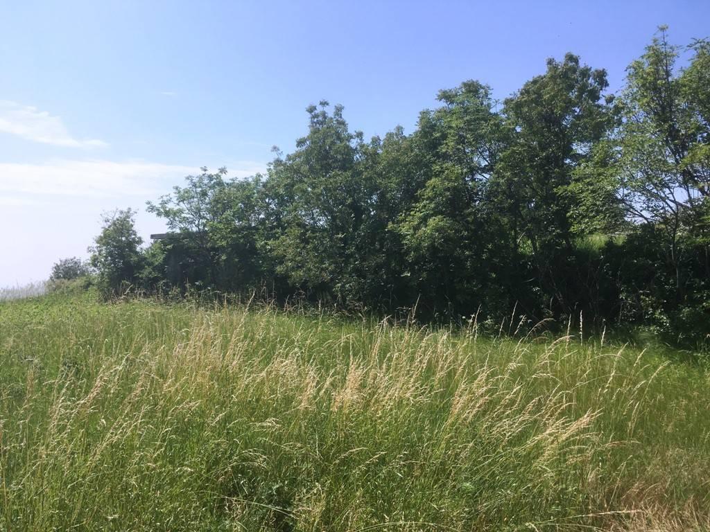 Terreno Edificabile Residenziale in Vendita a Caldiero