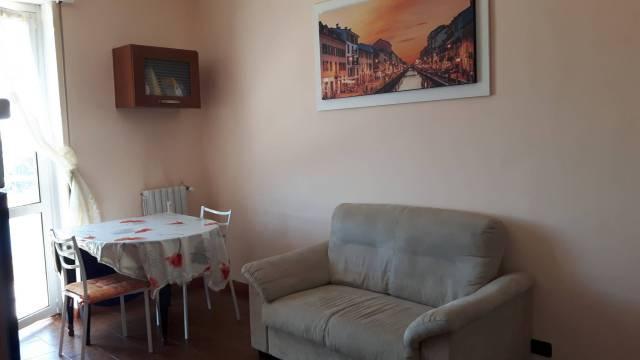 Appartamento in ottime condizioni arredato in affitto Rif. 7252089
