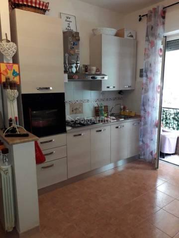 Appartamento in buone condizioni arredato in affitto Rif. 7189553