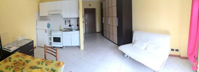 Appartamento - monolocale affitto - Pomezia