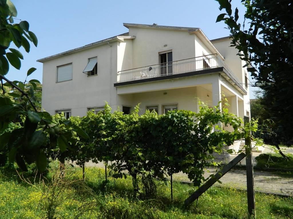 Appartamento in buone condizioni in vendita Rif. 7199455