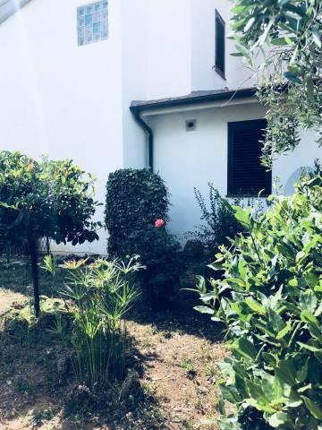 Terratetto Scarlino Belvedere