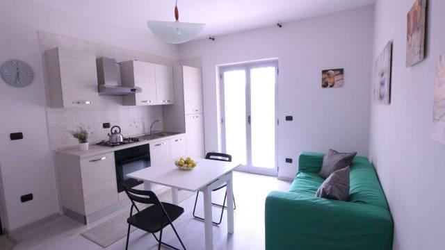 Appartamento in ottime condizioni arredato in affitto Rif. 7217464