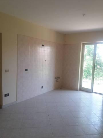 Appartamento in buone condizioni in affitto Rif. 7226565