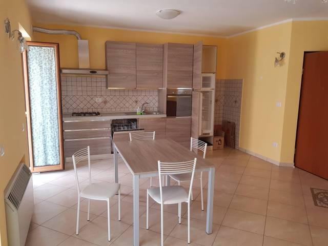Appartamento in ottime condizioni arredato in affitto Rif. 7241429