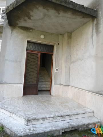 Appartamento in buone condizioni in affitto Rif. 7241434