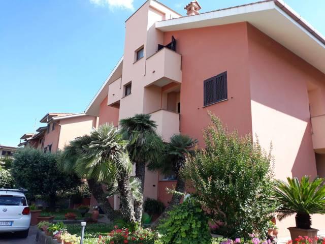 Appartamento in buone condizioni in affitto Rif. 7242700