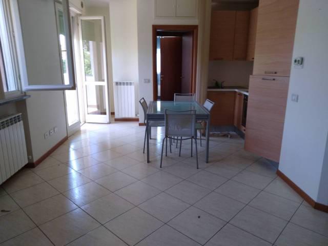 Appartamento in ottime condizioni in affitto Rif. 7254335