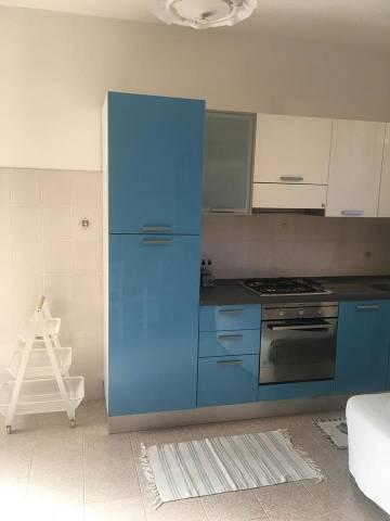 Appartamento in ottime condizioni arredato in affitto Rif. 7266505