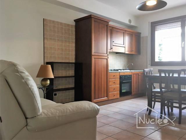 Appartamento in ottime condizioni arredato in affitto Rif. 7284873