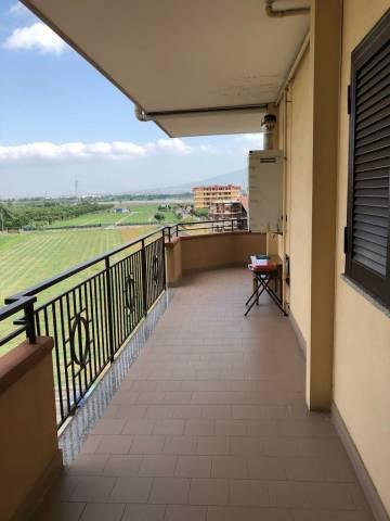 Appartamento in buone condizioni in affitto Rif. 7278473