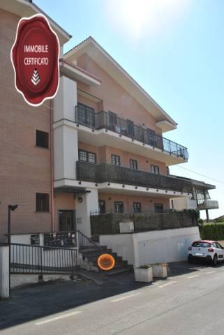 Appartamento in ottime condizioni arredato in affitto Rif. 7171217
