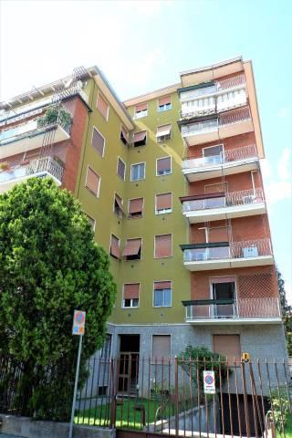 Appartamento in buone condizioni arredato in affitto Rif. 7339207