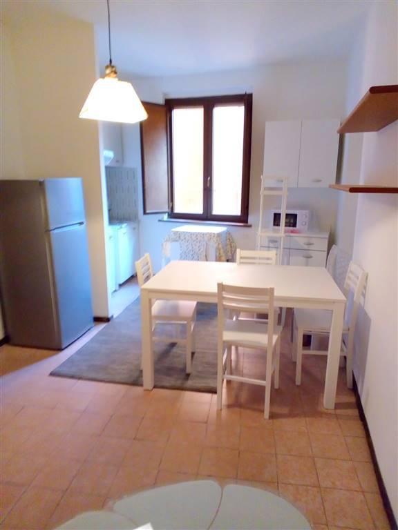 Appartamento in ottime condizioni arredato in affitto Rif. 7364843