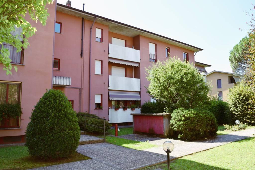 Appartamento in buone condizioni arredato in affitto Rif. 7413269