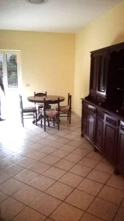 Appartamento in buone condizioni arredato in affitto Rif. 7732870
