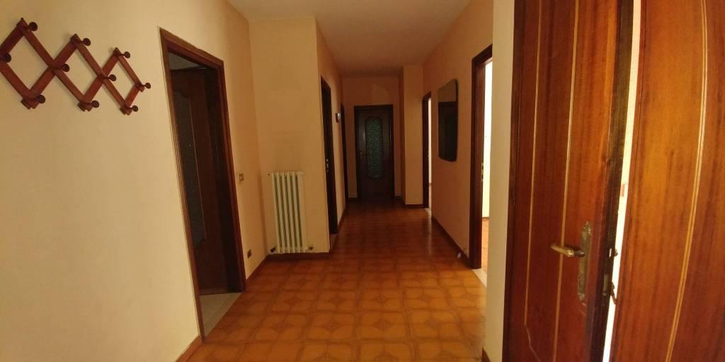 Appartamento in buone condizioni in affitto Rif. 7448240