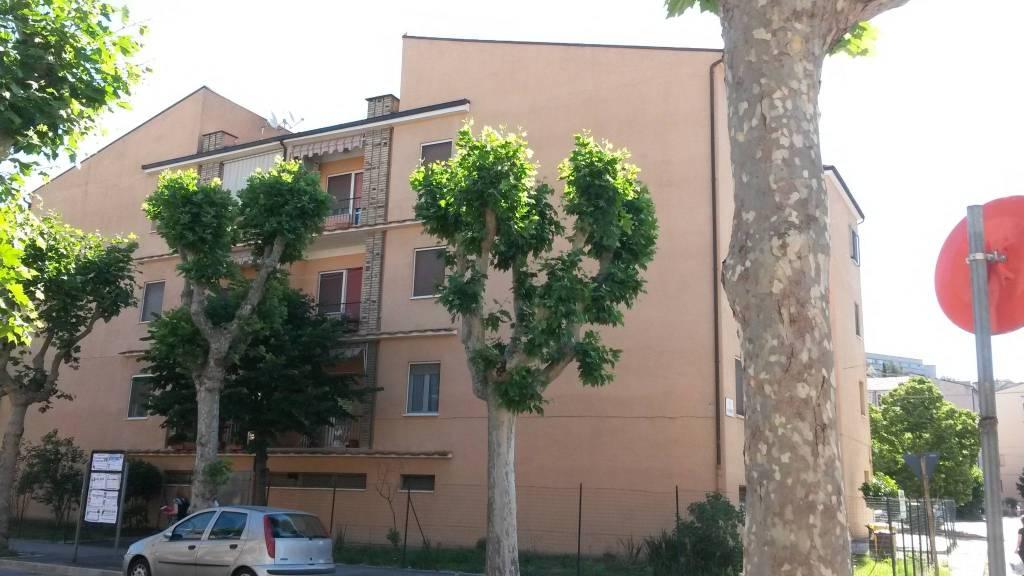 Appartamento 5 locali in affitto a Chieti (CH)