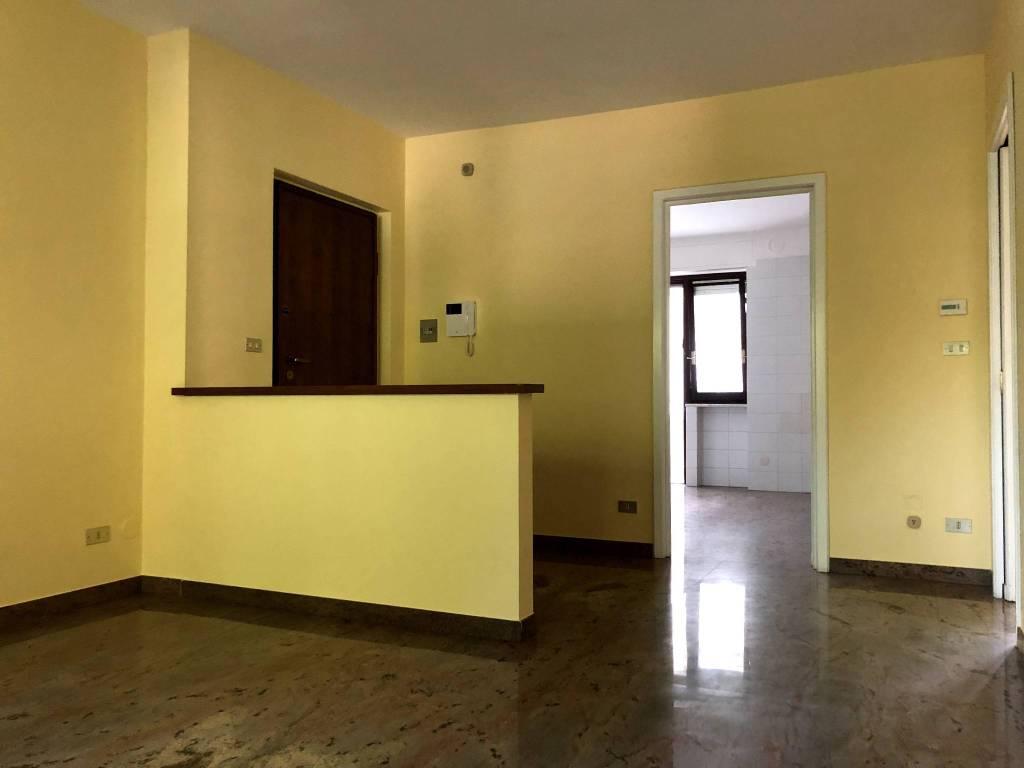 Appartamento in ottime condizioni in affitto Rif. 7484791