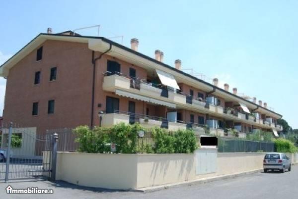 Ciampino Via Cuneo Splendido trilocale