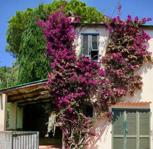 bellissima casa con giardino