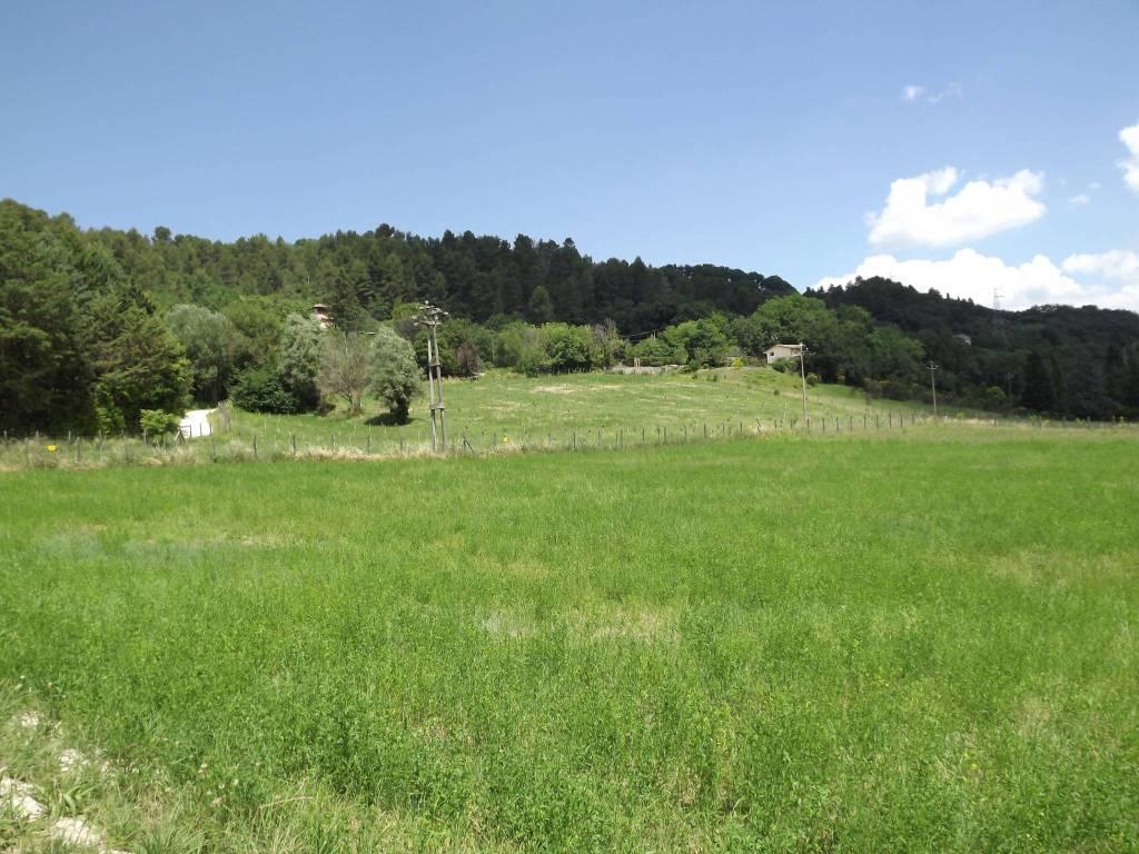 Terreno Agricolo in vendita a Spoleto, 9999 locali, prezzo € 60.000   PortaleAgenzieImmobiliari.it