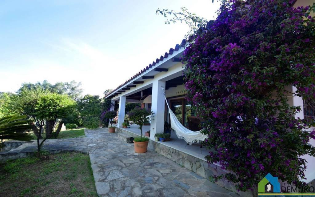 Villa in Vendita a Olbia:  5 locali, 686 mq  - Foto 1