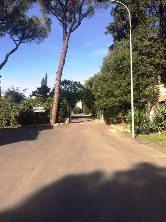 CASTELNUOVO DI PORTO – VIA TIBERINA