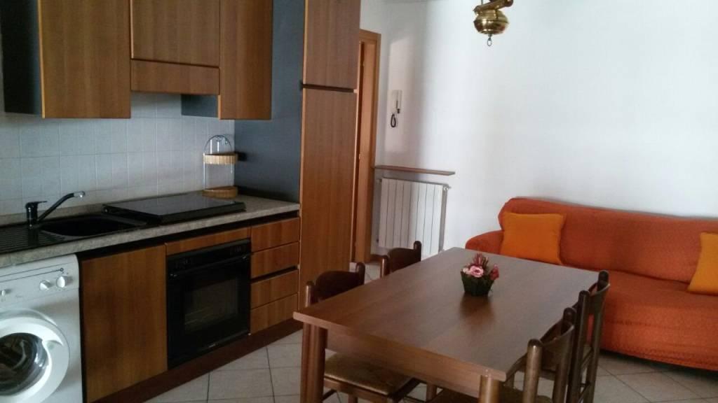 Appartamento in ottime condizioni arredato in affitto Rif. 7600669