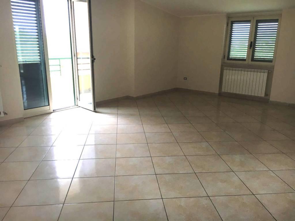 Appartamento in buone condizioni in affitto Rif. 7706042