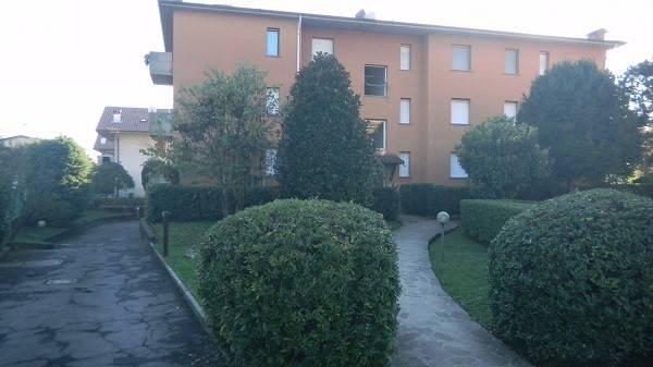 Appartamento in buone condizioni in affitto Rif. 7722290