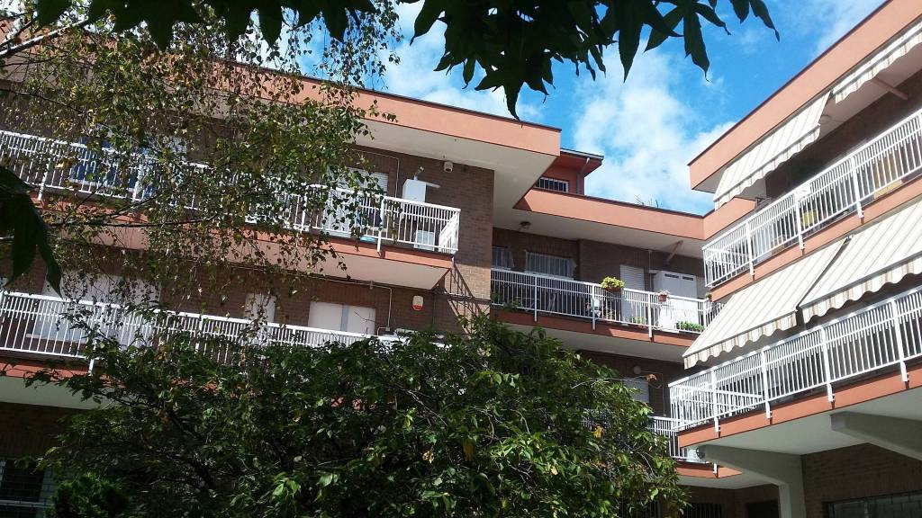 Appartamento in ottime condizioni parzialmente arredato in affitto Rif. 7756001