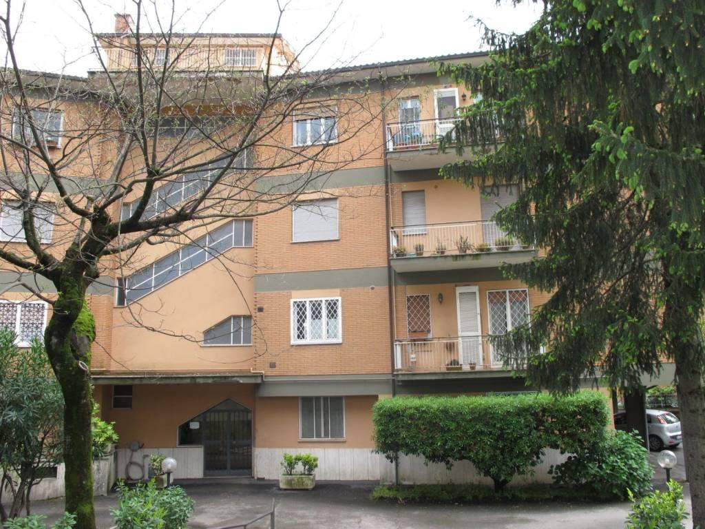 Appartamento in buone condizioni arredato in affitto Rif. 7770710