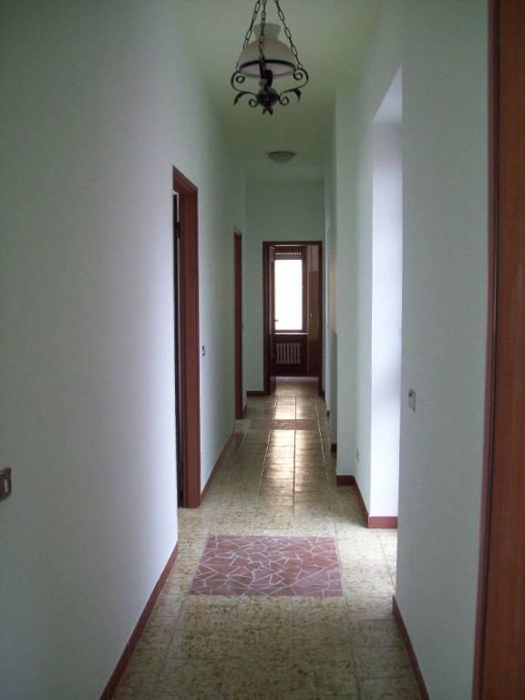 Appartamento in ottime condizioni in affitto Rif. 7794097