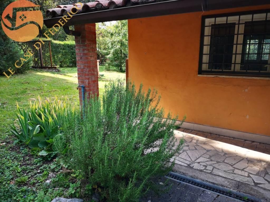Appartamento in ottime condizioni arredato in affitto Rif. 7795930