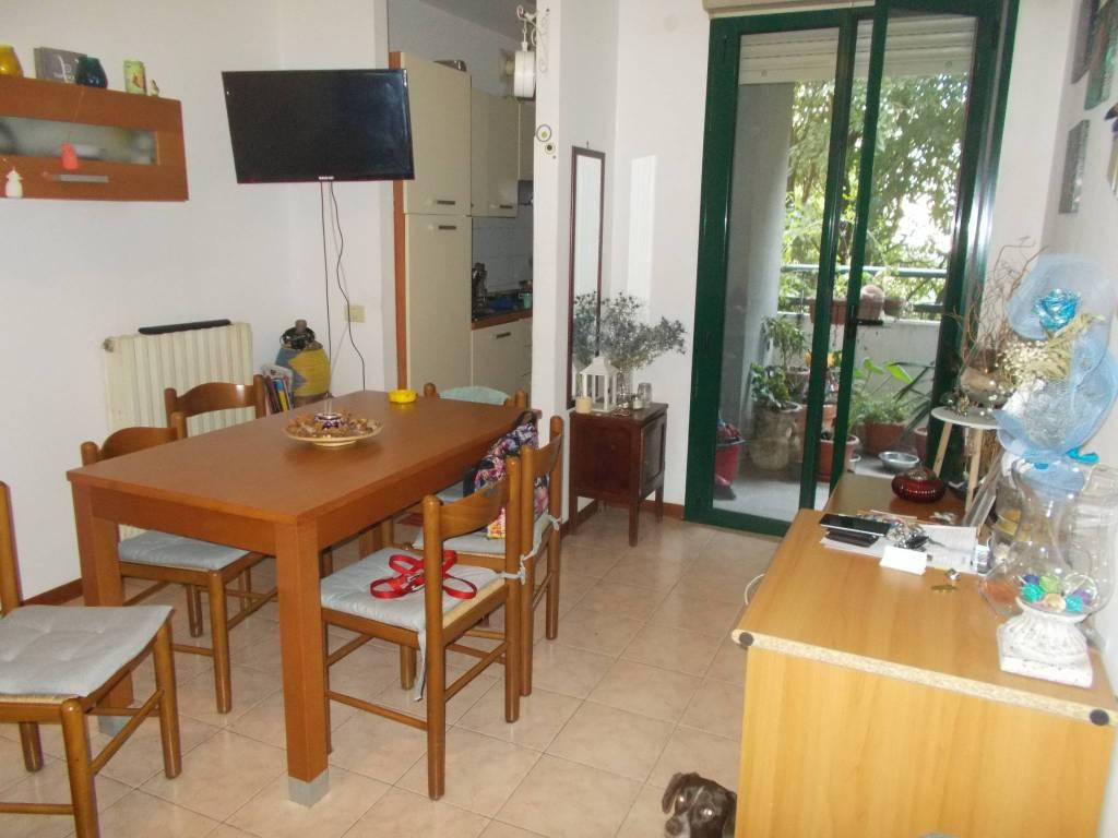 Appartamento in buone condizioni arredato in affitto Rif. 7835988