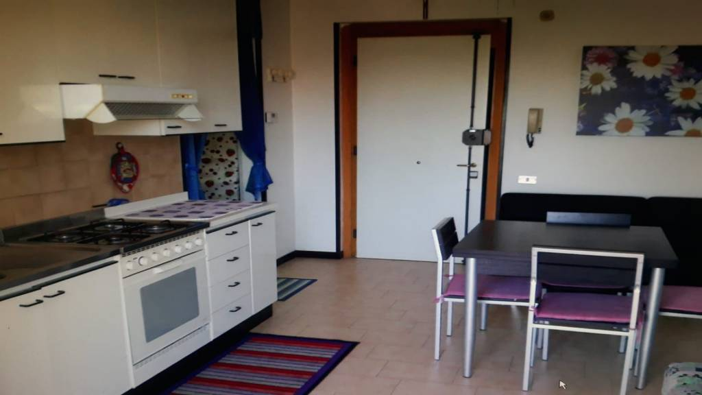 Appartamento in buone condizioni arredato in affitto Rif. 8997772