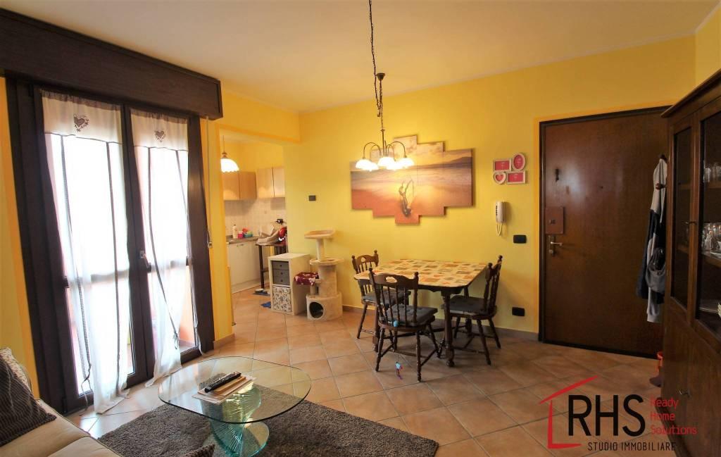 Appartamento in ottime condizioni arredato in affitto Rif. 7850200
