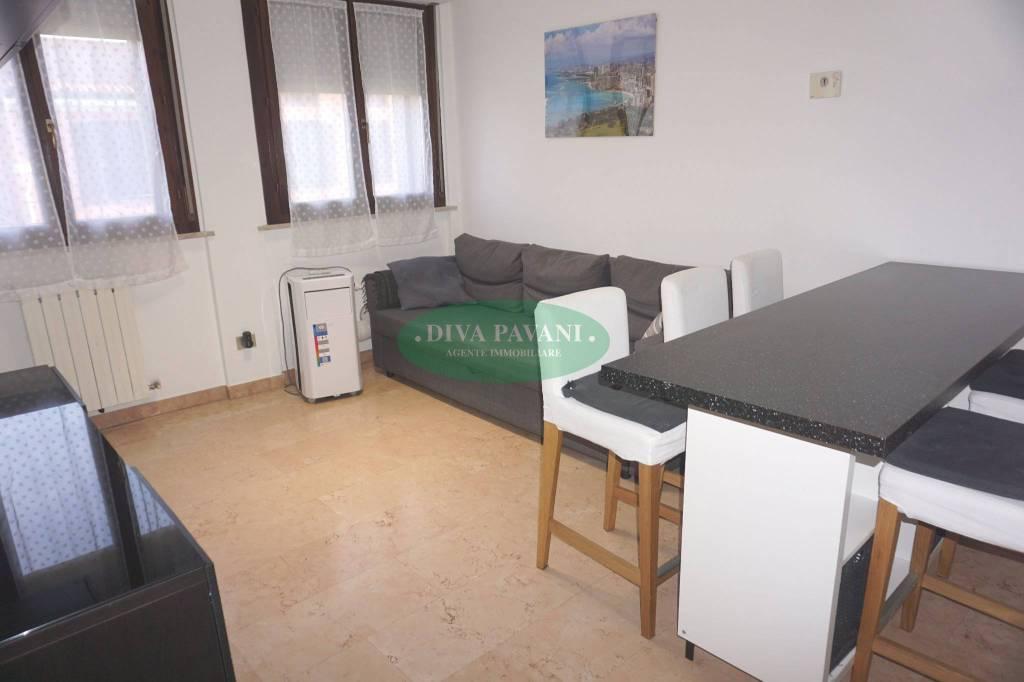 Appartamento in ottime condizioni arredato in affitto Rif. 7858473