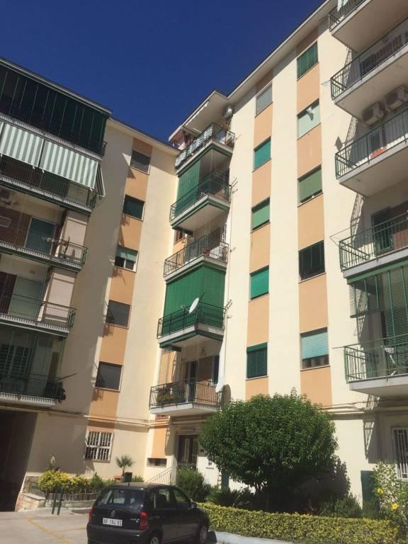 Appartamento in buone condizioni in affitto Rif. 7859480