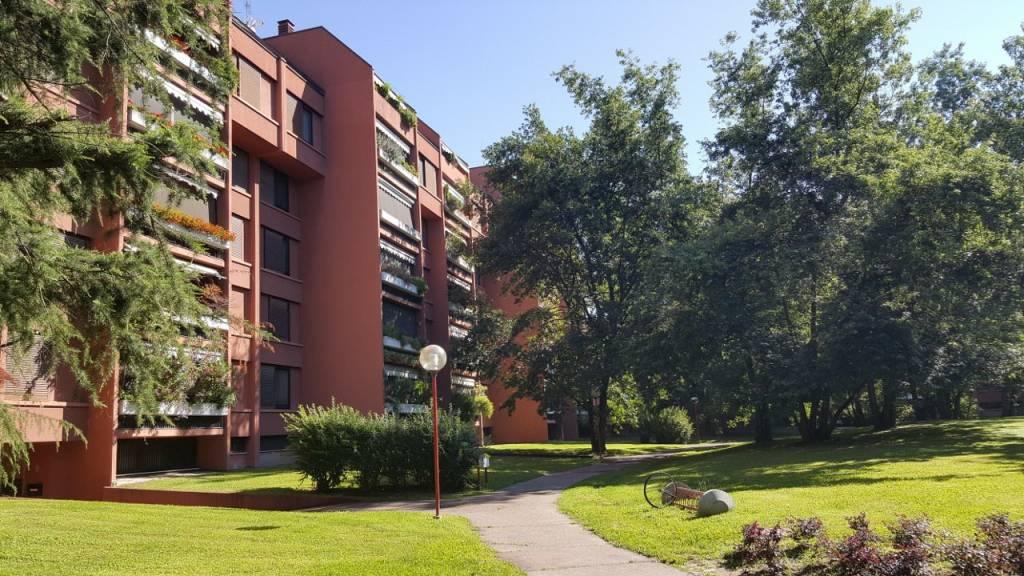 Milano Tre - Affitto - 5 locali - 180 mq.