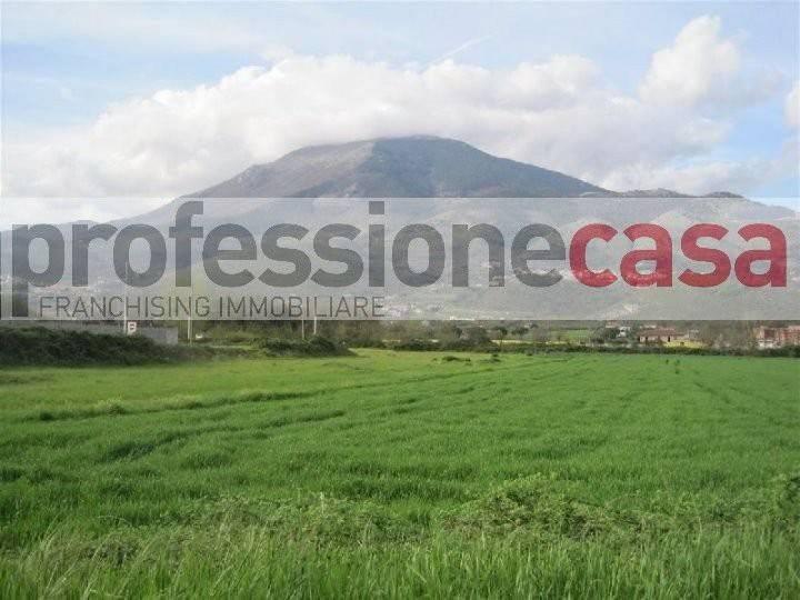 Terreno Agricolo in vendita a Piedimonte San Germano, 9999 locali, prezzo € 90.000 | CambioCasa.it