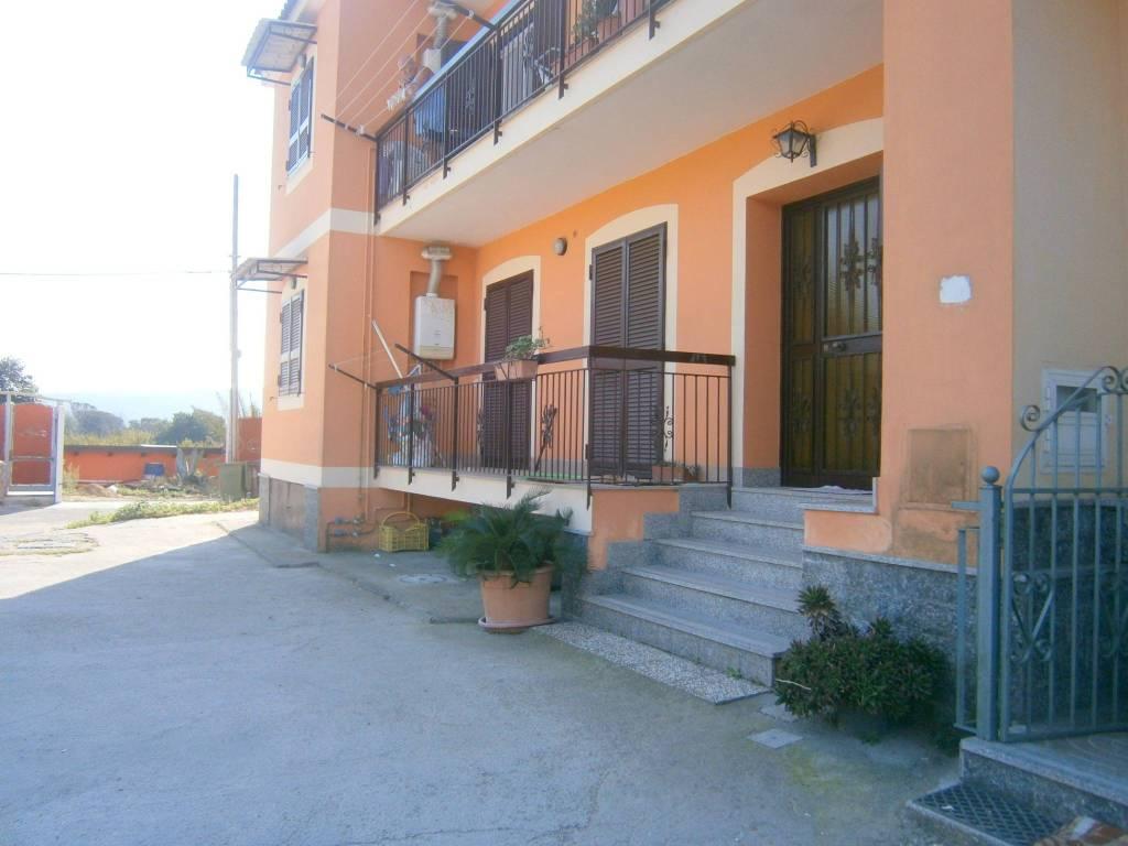 Appartamento in ottime condizioni in affitto Rif. 7900367