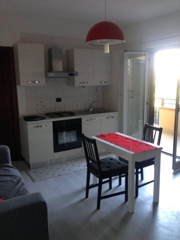 Appartamento in ottime condizioni arredato in affitto Rif. 7910992