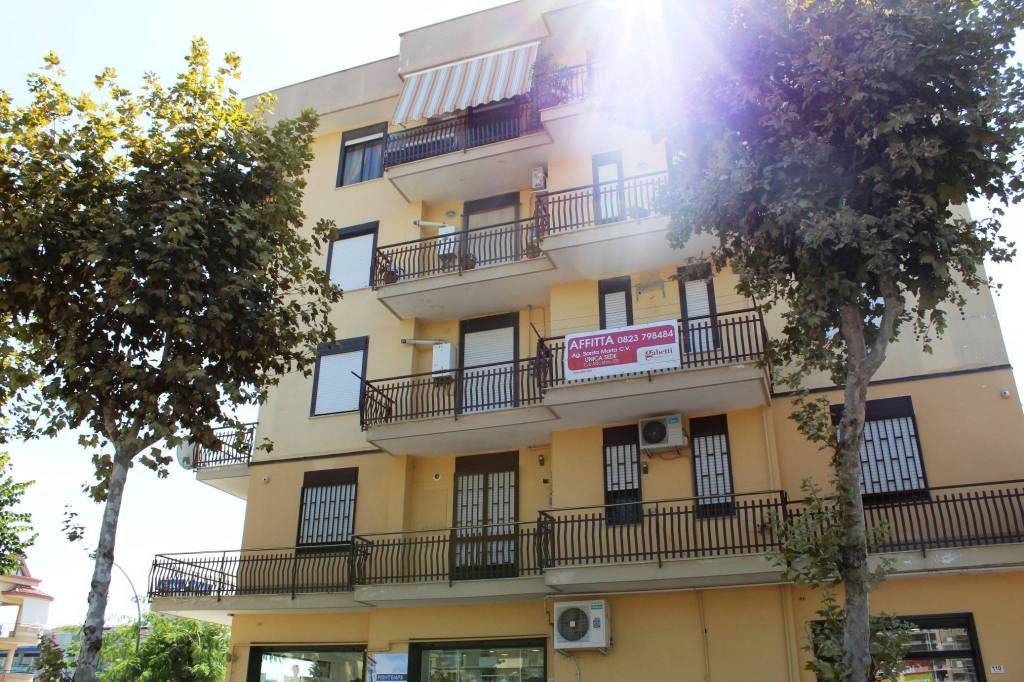 Appartamento in buone condizioni in affitto Rif. 7911007